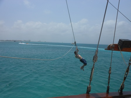 Aruba Rope Swing