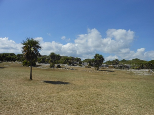 Grassy area with ruins