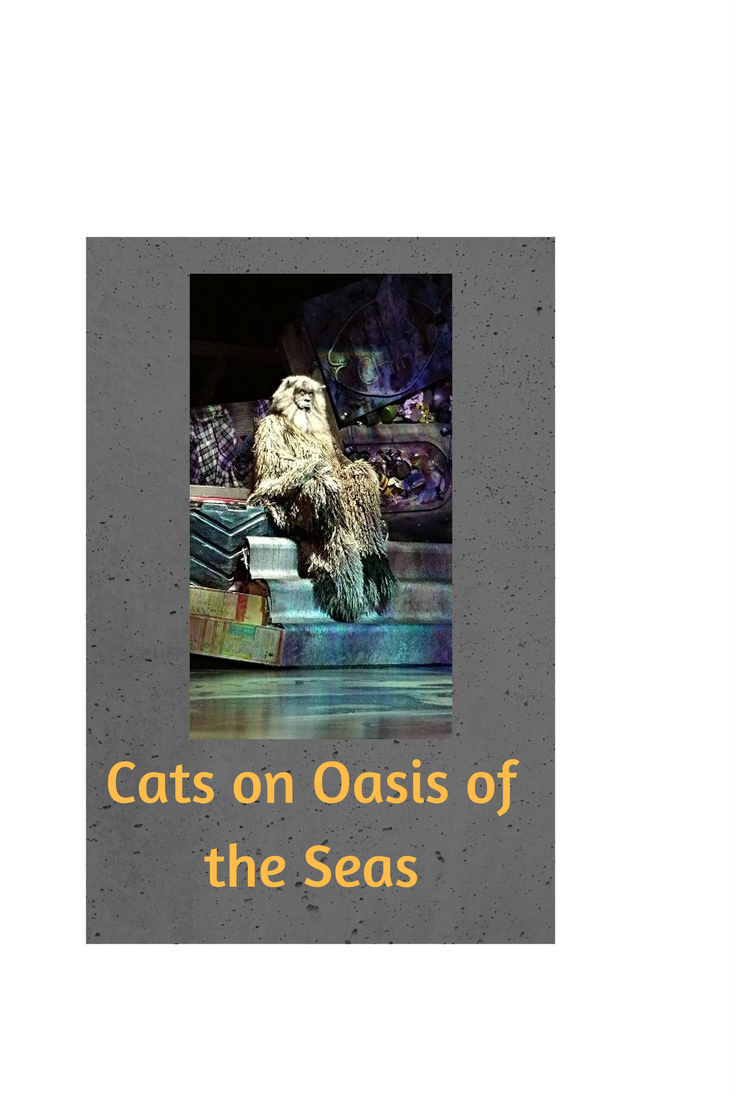 Cats on Oasis of the Seas