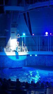 Oasis of Dreams diver