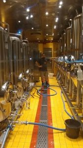 Red Frog Brewery on the Carnival Vista